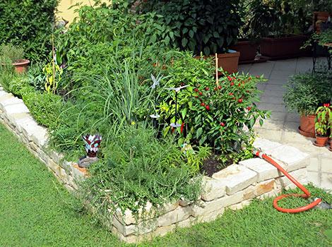 Chiligarten