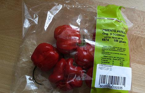 Rote Antillen-Habaneros aus Santo Domingo
