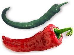 Peperoni, Peperone </br> Chili-Sorte