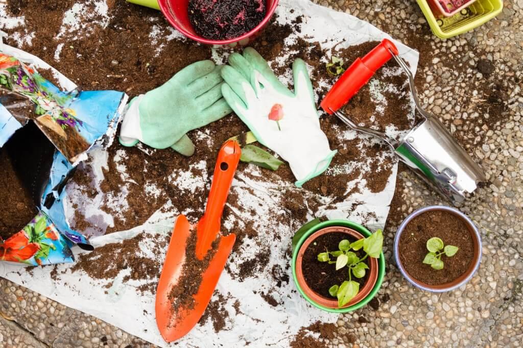 Guerilla Gardening_83513024_M