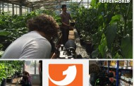 Chili kann mehr als scharf // TV Bericht bei Kabel 1 Abenteuer Leben