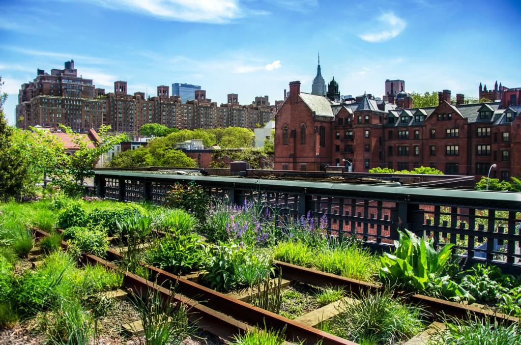 Urban Gardening - die umfassende Einleitung