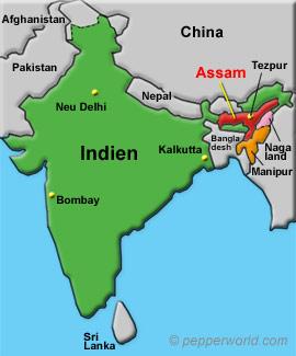 Indien, Bundesstaaten Assam, Nagaland und Manipur, Stadt Tezpur