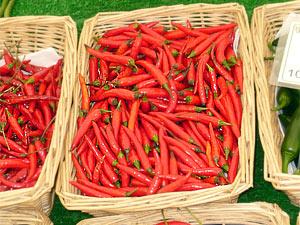 Scharfe Chilis - quasi Grundnahrungsmittel in Indonesien