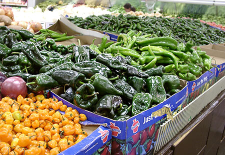 Frische Poblanos in einem Latino-Supermarkt in Albuquerque (New Mexico)