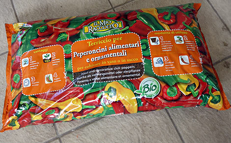Chili-Pflanzerde