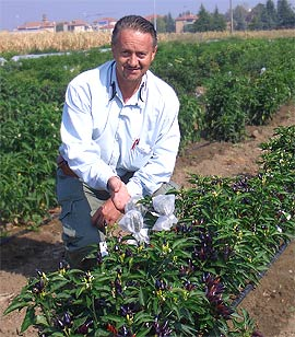 Dr. Mario Dadomo
