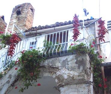Chili-Balkon 11