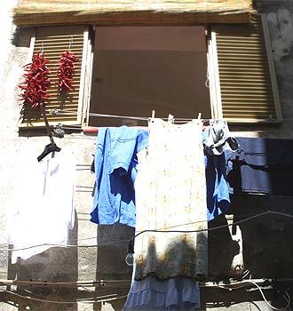 Chili-Balkon 14