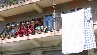 Chili-Balkon 18