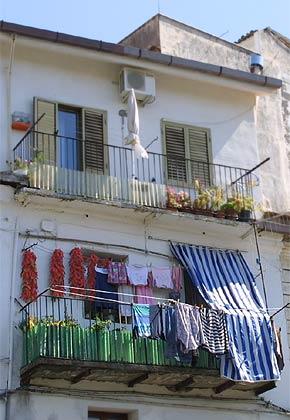 Chili-Balkon 17