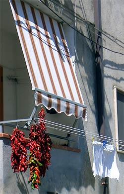 Chili-Balkon 10