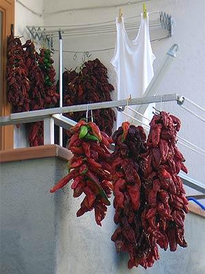 Chili-Balkon 1