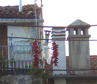 Chili-Balkon 22
