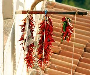 Chili-Balkon 15