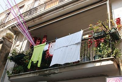 Chili-Balkon 23