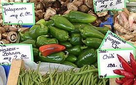 Frische Jalapeño-Chilis