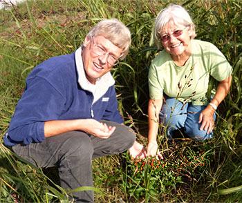 Harald & Rente bewundern ihr Kreuzungs-Ergebnis