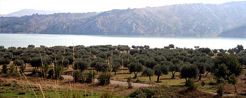 See nahe Senise