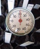 Für den Chili Anbau ist ein Thermometer sehr vorteilhaft, da so die Temperatur der Anzuchterde gemessen werden kann.