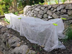 Ein Vlies-Zelt bietet Schutz vor milder Kälte, auskühlende Winde werden so ferngehalten.