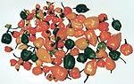 Auch in Norddeutschland kann man Chilis anbauen, wie diese norddeutsche Habanero-Ernte zeigt.