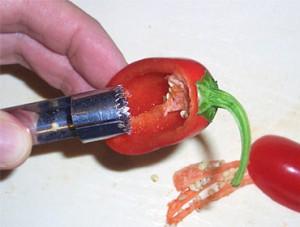 Chili Tipp 2: Chilis entkernen leicht gemacht mit einem Apfelausstecher.
