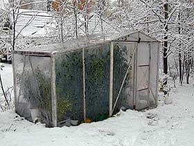 Chili Gewächshaus in Finnland mit bestimmt sehr hohen Heizkosten.