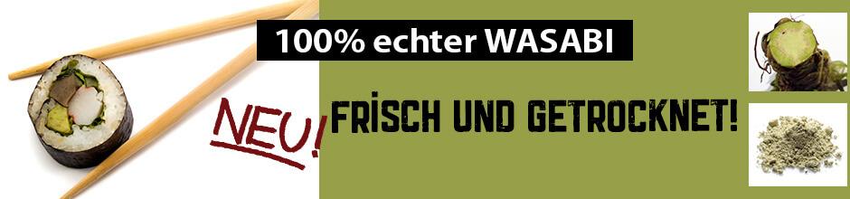 Wasabi kaufen