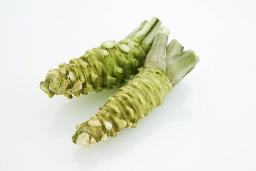 Zwei frische Wasabi Rhizome