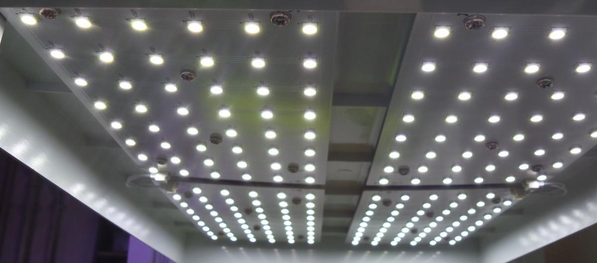 Die Green Unit, ein LED Mini-Gewächshaus im Test </br>Teil 1 - Aufzucht