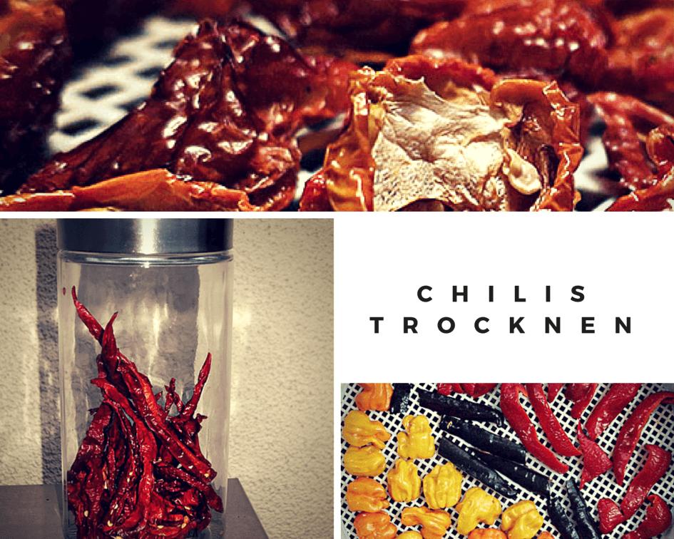 Atemberaubend 6 heisse Tipps, um an 365 Tagen die eigenen Chilis zu genießen &TW_81
