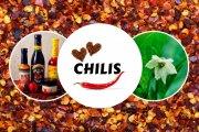 Der ultimative Chili Guide - Alles über Chilis, Peperoni & Co.