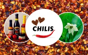 Der ultimative Chili Guide - Alles über Chilis, Peperoni & Co.