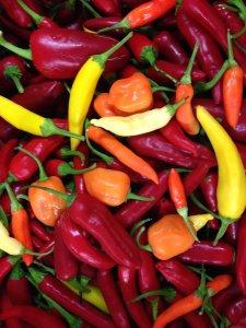 Unterschiedliche Chili Sorten