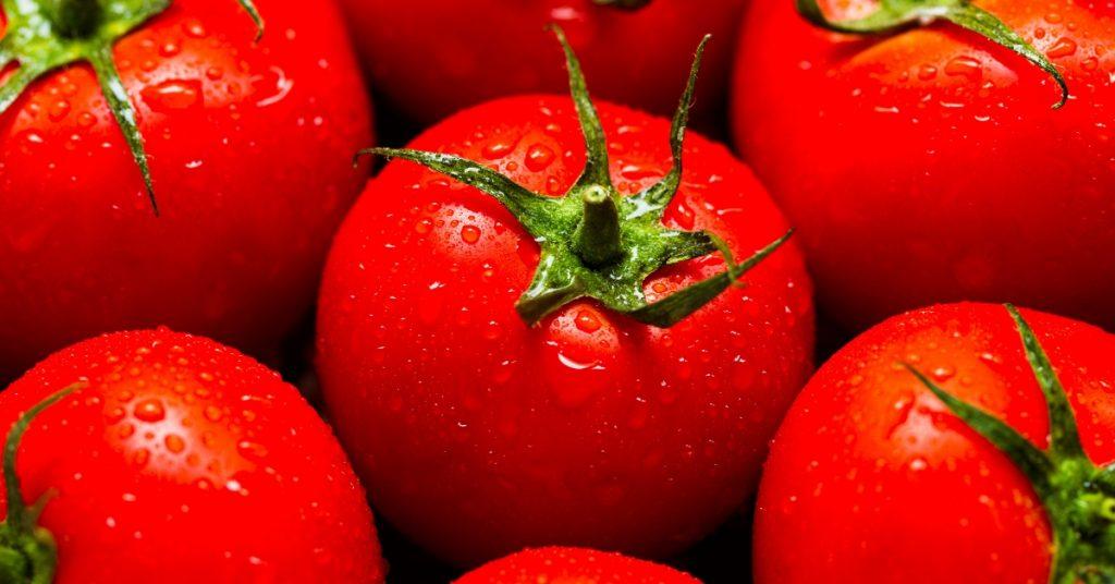 Alles Wissenswerte zu Tomaten